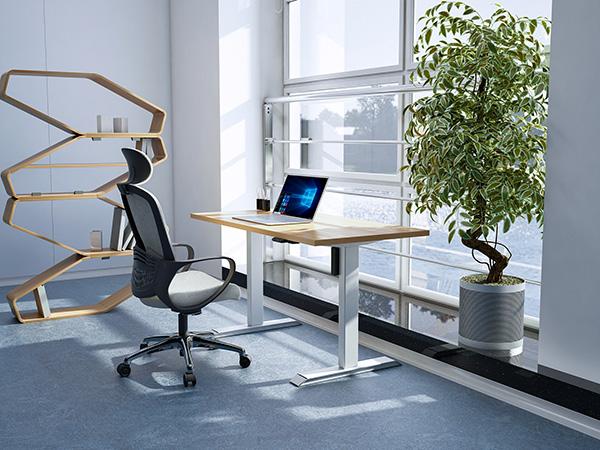 单电机2节升降办公桌